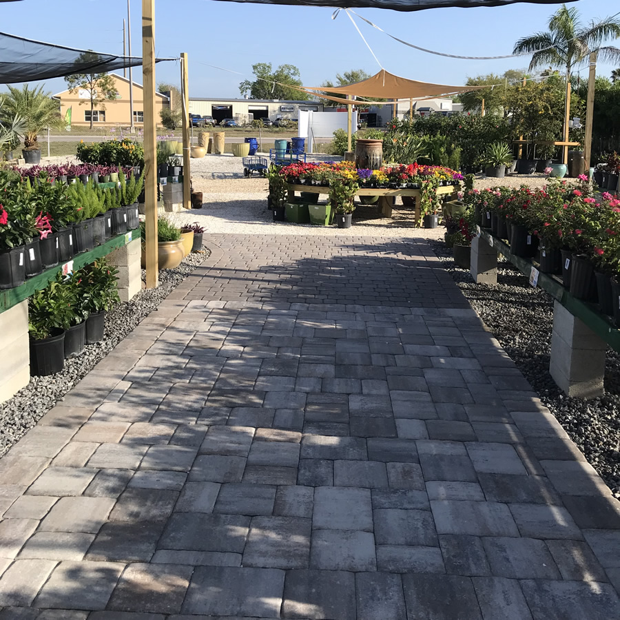 Craig's Perfect Turf Landscaping Nursery, Port Charlotte Florida
