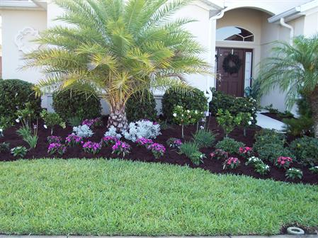 Colorful Landscape - Call Us For A Quote Today! (941) 380-4062 Home Portfolio Services
